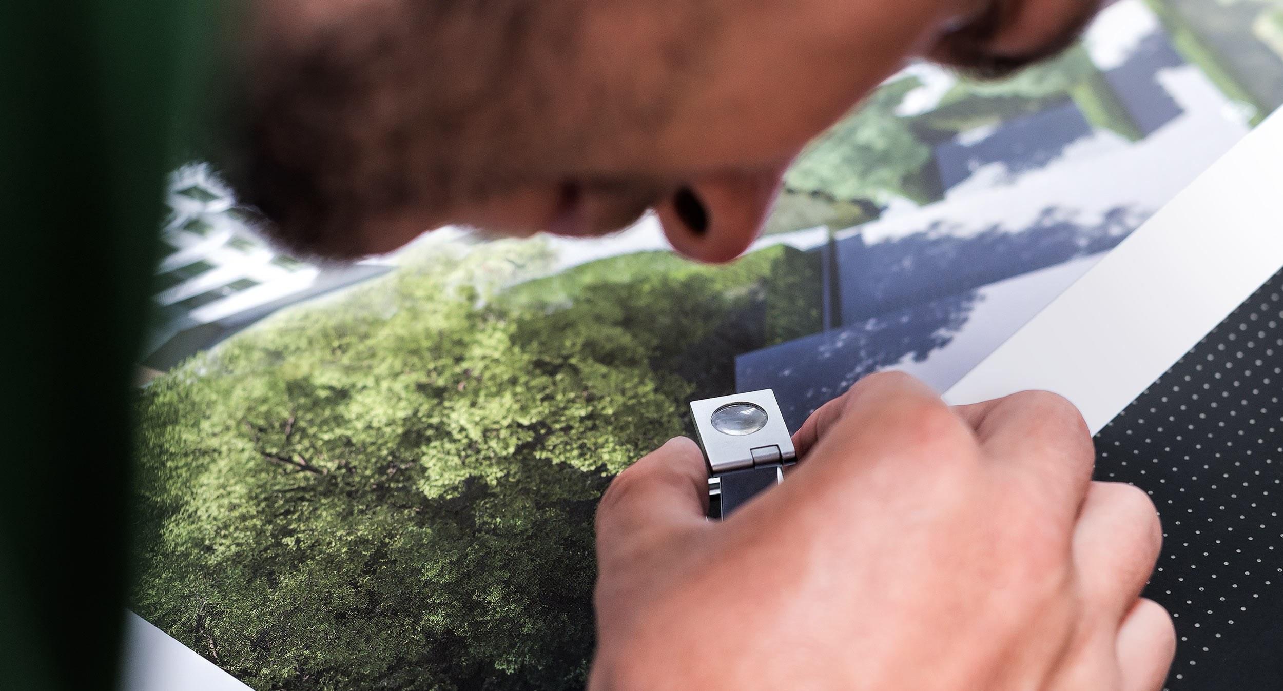 Aus Bäumen werden Bücher - Grafikdesign